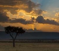 Masai Mara (9 of 75)