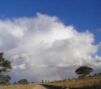 kalahari-road-and-clouds