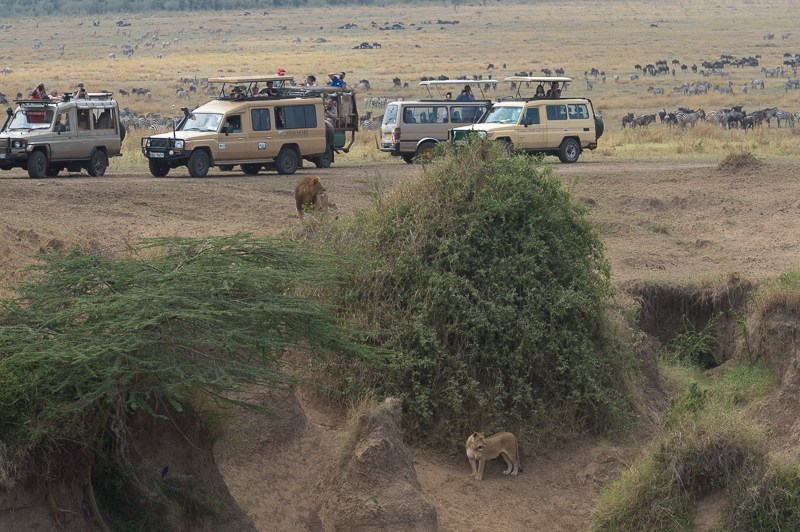 Masai Mara (75 of 75)